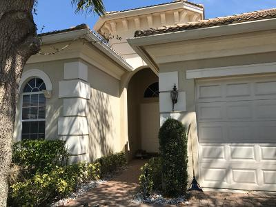 Boca Raton Single Family Home For Sale: 9736 Palma Vista Way