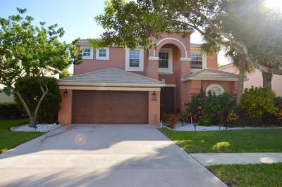 Royal Palm Beach Single Family Home For Sale: 2511 Glendale Drive