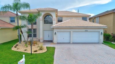 Boca Raton Single Family Home For Sale: 12638 Little Palm Lane