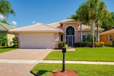 Boynton Beach Single Family Home For Sale: 8870 Via Tuscany Drive