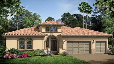 Boca Raton Single Family Home For Sale: 17718 Cadena Drive