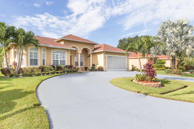Port Saint Lucie Single Family Home For Sale: 282 SW Amesbury Avenue