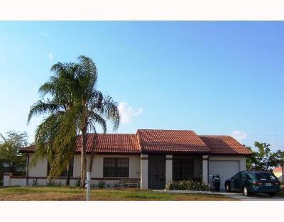 Port Saint Lucie Single Family Home For Sale: 855 SW Amethist Terrace