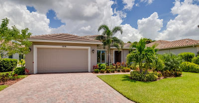 Port Saint Lucie Single Family Home For Sale: 11210 SW Apple Blossom Trail