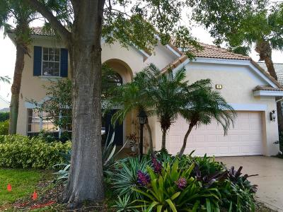 Palm Beach Gardens Single Family Home For Sale: 78 Princewood Lane