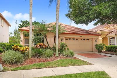 Palm Beach Gardens Single Family Home Contingent: 4025 Dorado Drive