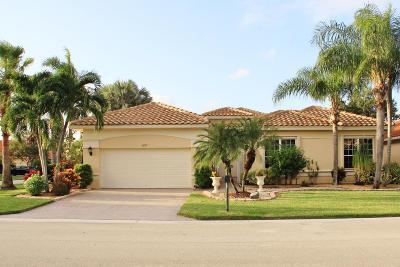 Boynton Beach Single Family Home For Sale: 6603 Maggiore Drive