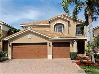 Boynton Beach Single Family Home For Sale: 8357 Emerald Winds Circle
