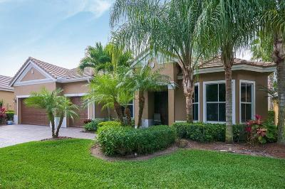 Lake Worth Single Family Home For Sale: 9122 Sedgewood Drive