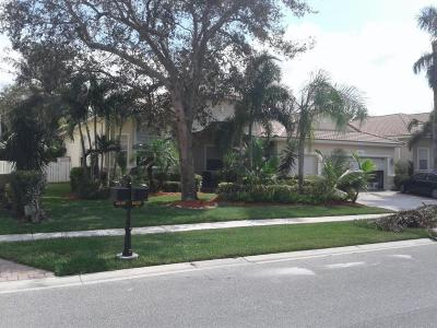 Lake Worth Single Family Home For Sale: 6925 Finamore Circle