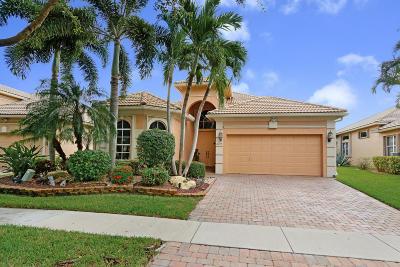 Boynton Beach Single Family Home For Sale: 10074 Mizner Falls Way