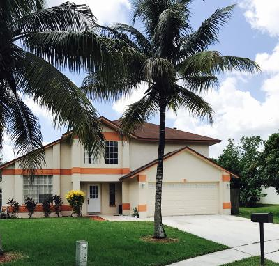 Royal Palm Beach Single Family Home For Sale: 182 Royal Pine Circle S