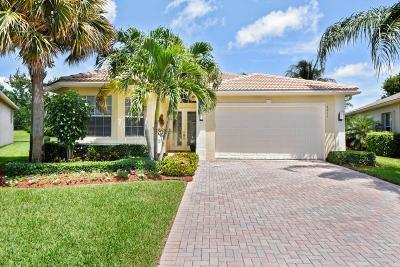 Delray Beach Single Family Home For Sale: 6911 Imperial Beach Circle