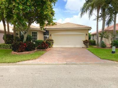 Boynton Beach Single Family Home For Sale: 6615 Malta Drive