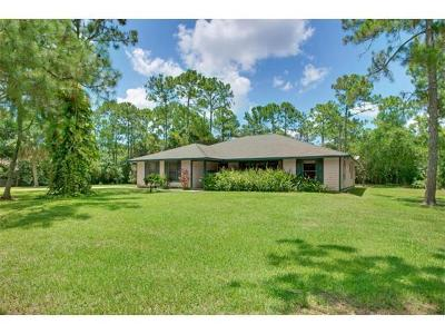 Jupiter Single Family Home For Sale: 13557 154th Place
