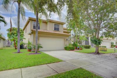 Delray Beach Single Family Home For Sale: 4060 Sea Grape Circle