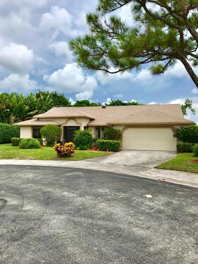 Delray Beach Single Family Home For Sale: 2335 Riviera Drive
