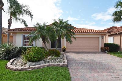 Boynton Beach Single Family Home For Sale: 7768 Campania Drive