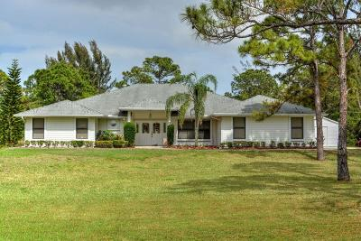 Palm Beach Gardens Single Family Home For Sale: 14182 64th Drive