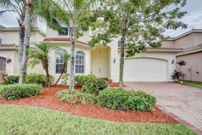 Boynton Beach Single Family Home For Sale: 8573 Breezy Hill Drive