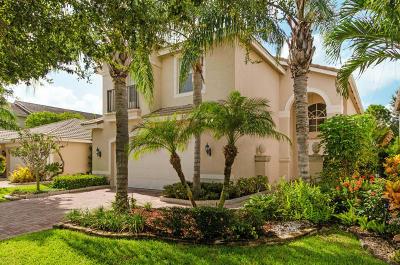 Boynton Beach Single Family Home For Sale: 8893 Sandy Crest Lane