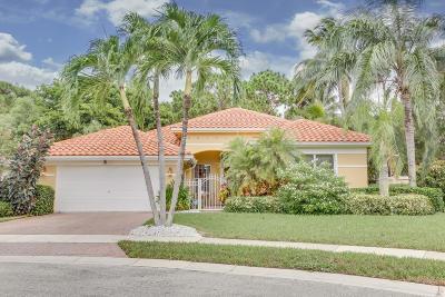Boynton Beach Single Family Home For Sale: 6529 Jog Estates Lane