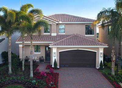 Delray Beach Single Family Home For Sale: 14718 Smokey Citrine Street