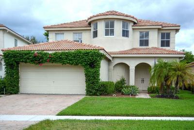 Wellington Single Family Home For Sale: 10517 Galleria Street