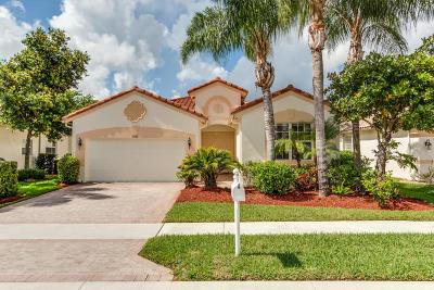 Lake Worth Single Family Home For Sale: 9526 Vercelli Street