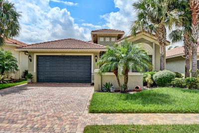 Boynton Beach Single Family Home For Sale: 6887 Boscanni Drive
