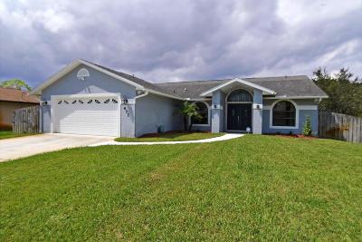 Port Saint Lucie, Saint Lucie West Single Family Home For Sale: 471 SE Ron Rico Terrace