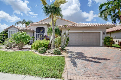 Boynton Beach Single Family Home For Sale: 6696 E Liseron