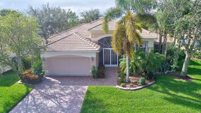 Single Family Home For Sale: 9760 Via Verga Street