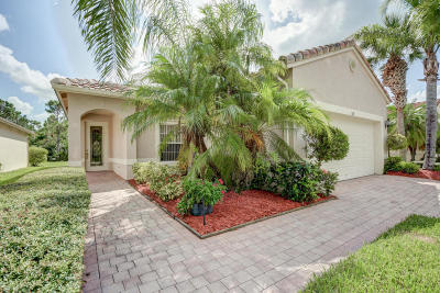 Port Saint Lucie Single Family Home For Sale: 319 NW Treeline Trace