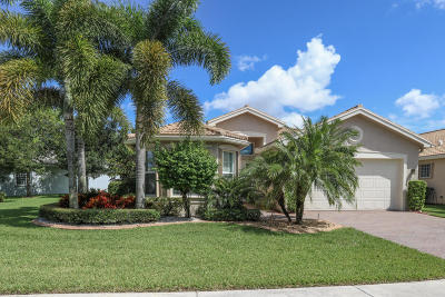 Boynton Beach Single Family Home For Sale: 9112 Meridian View Isle(S)