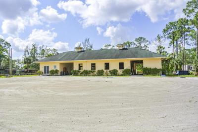 Royal Palm Beach Single Family Home For Sale: 11128 Sunset Boulevard