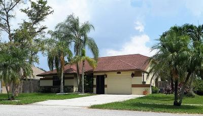 Boca Raton Single Family Home For Sale: 22584 Sawfish Terrace
