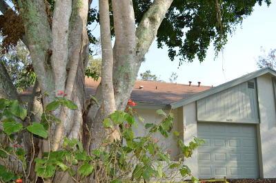 Delray Beach Single Family Home For Sale: 3811 Arelia Drive S