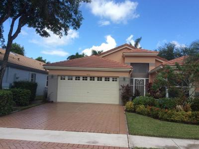 Boynton Beach Single Family Home For Sale: 9750 Harbour Lake Circle