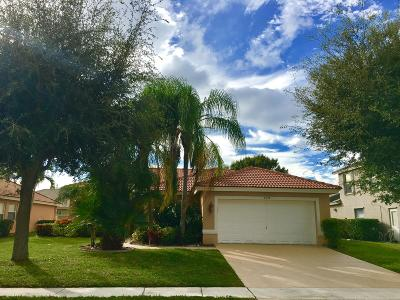 Lake Worth Single Family Home For Sale: 6339 Dornich Lane
