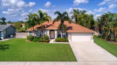 Royal Palm Beach Single Family Home For Sale: 150 Granada Street