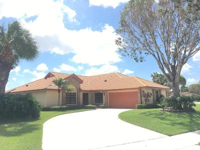 Boynton Beach Single Family Home For Sale: 7390 Hearth Stone Avenue