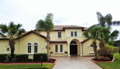 Port Saint Lucie Single Family Home For Sale: 817 SW Saint Julien Court