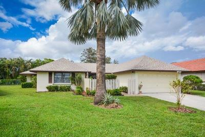 Boynton Beach Single Family Home For Sale: 10275 Greentrail Drive N