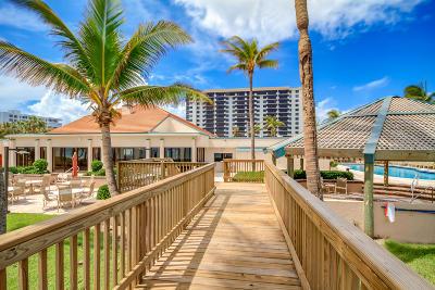 Coronado At Highland Beach Condo Condo For Sale: 3400 S Ocean Boulevard #15-L