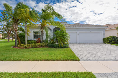 Boynton Beach Single Family Home For Sale: 9699 Dovetree Isle Drive