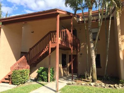 Royal Palm Beach Condo For Sale: 1503 Lakeview Drive E