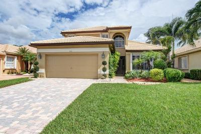 Delray Beach Single Family Home For Sale: 7581 Doubleton Drive