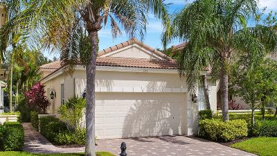 Palm Beach Gardens Single Family Home For Sale: 211 Isle Verde Way