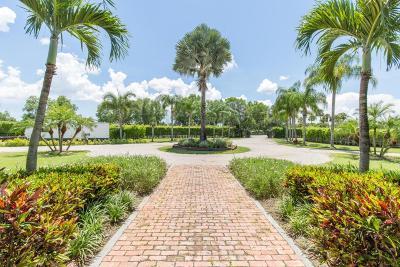 Wellington Single Family Home For Sale: 14415 Palm Beach Point Boulevard